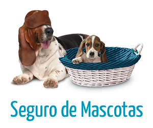 rastreator-seguro-de-mascotas