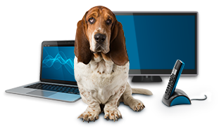 rastreator-producto-internet-fijo-tv