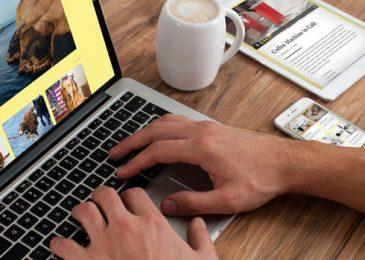 autónomo o freelance