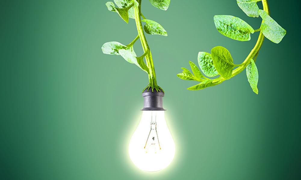 factura de la electricidad